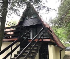 Domek w lesie