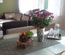 Apartment Leśniczówka