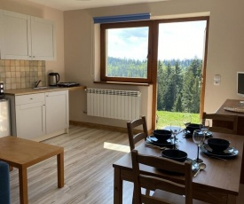 Apartament w górach Gorce