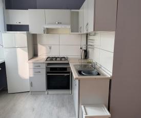 Apartament Leśne