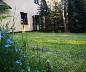 Dom w sosnowym lesie przy jeziorze