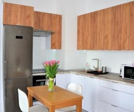 Apartament 41 Czechowska 3