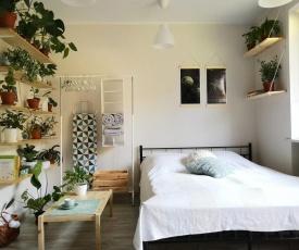 Urban Jungle Apartment - City Centre