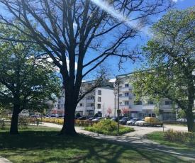 Apartamenty Platan - visitopl