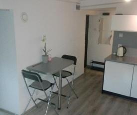 Holiday Flat - Attic Apartment Gdynia Oksywie