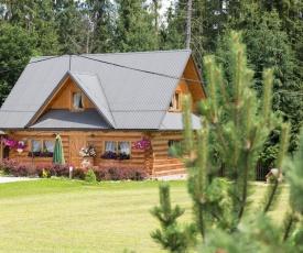 Domek góralski Toporówka