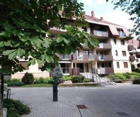 Apartament z pięknym widokiem Polanica Ogrodowa Wille Parkowe