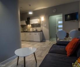 Apart-Invest Apartament Wiwi 2